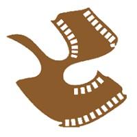 Satyajit Ray Film & Television Institute (SRFTI)